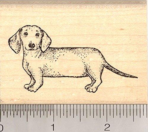 Dachshund Rubber Stamp, Wiener Dog