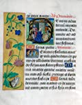 Pack of 5 Christmas Cards: 'Book of Hours' from the Library of Sir John Soane's Msueum