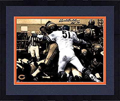 Framed Dick Butkus Chicago Bears Autographed 11'' x 14'' Spotlight Photograph with HOF 79 inscription - Fanatics Authentic Certified