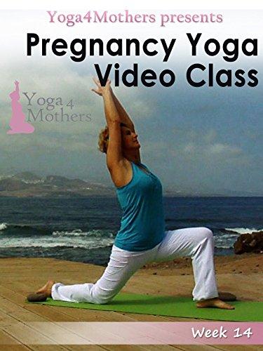 Pregnancy Yoga: Week 14 of Pregnancy