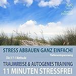 11 Minuten Stressfrei - Stress abbauen ganz einfach: Traumreise & Autogenes Training | Franziska Diesmann,Torsten Abrolat
