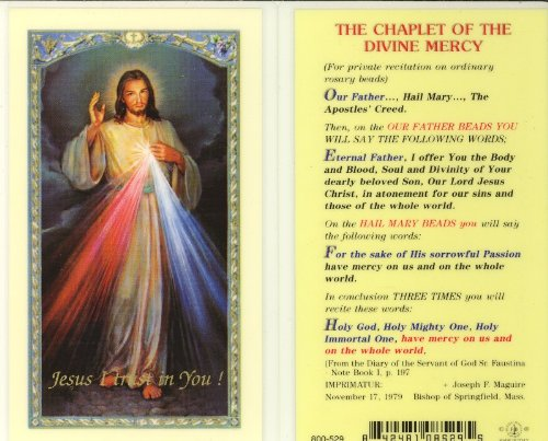 Chaplet of the Divine Mercy Holy Card (800-529) - 1