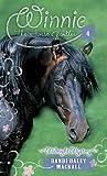 Midnight Mystery: 4 (Winnie the Horse Gentler)