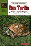 Box Turtles the Real Thing