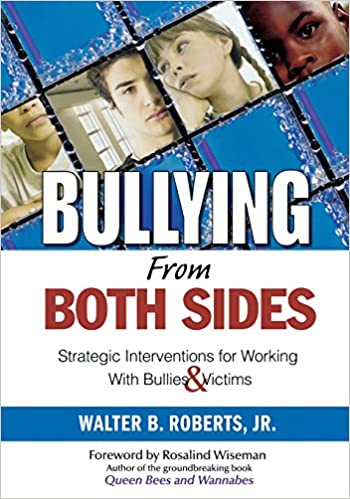 Book cover: bullying from both sides