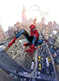 Amazing Spider-man #700 Coipel Variant Retailer Incentive Final Issue