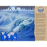 Marine Biome Poster
