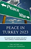 Peace in Turkey 2023: The Question of Human Security and Conflict Transformation