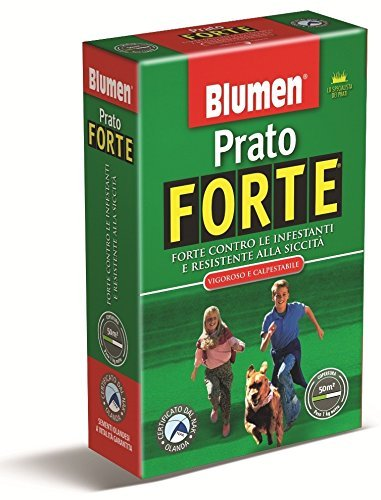 prato-forte-blumen-scatola-kg-1