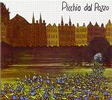 Picchio Dal Pozzo by Picchio Dal Pozzo (2012-01-17)