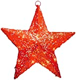 National Tree MZST-306-14-1 Red Sisal Star Solid Center with 10 Clear Lights-UL, 14-Inch
