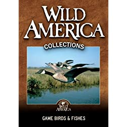 Game Birds & Fishes Collection