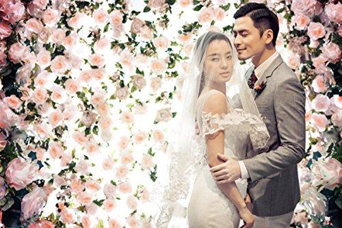 Beautiful Flowers Backgrounds Photo Studio 6.5Feet-10Feet Romantic Wedding Backdrops Photography Vinly Backdrops For Photography Backgrounds M6917