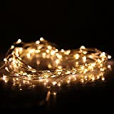 DBPOWER 50 LED 100 LED Led String Lights 5M 10M (16.5ft 33ft) Copper Wire LED Starry Light for Outdoor - Gardens - Christmas - Homes - Wedding and Party (10M 100LED + Remote - Warm White)