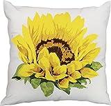 Kathy Ireland Worldwide L3140 White Decorative Pillow, 18