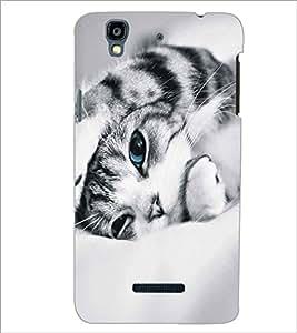 MICROMAX YU YUREKA CUTE CAT Designer Back Cover Case By PRINTSWAG