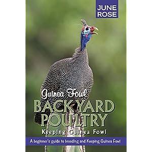 Guinea Fowl, Backyard Poultry: Keeping Guinea Fowl