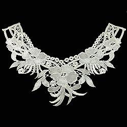 Embroidery Collar Lace hollow Flowers soluble lace Neckline Applique Trim lace