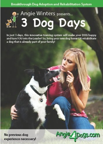 3 Dog Days, Revolutionary Dog Training and Rehabilitation System