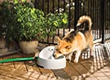 PetSafe Drinkwell Everflow Indoor/Outdoor Pet Fountain