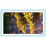 50pcs/bag Grape Seeds Bonsai Fruit Black Grape Seeds Dwarf Grapes Tree Easy Grow Japanese Dwarf Fruit For Home...