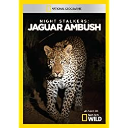Night Stalkers: Jaguar Ambush