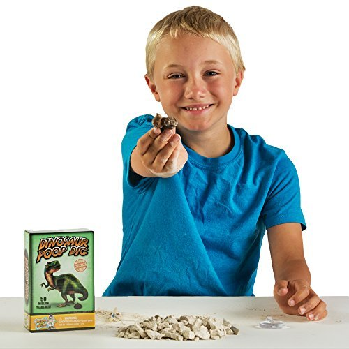 Discover with Dr. Cool Dinosaur Poop Dig Science Kit