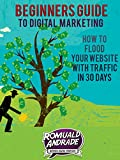 Beginners Guide to Digital Marketing: How To Flood Your Website With Traffic in 30 days
