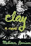 Clay: A Novel