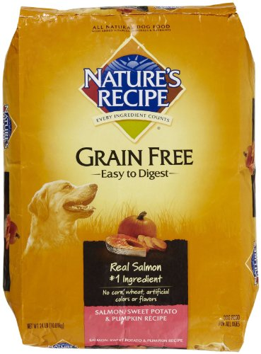 Nature S Recipe Grain Free Salmon Dog