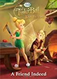 Tinker Bell and the Lost Treasure: A Friend Indeed (Hologramatic Sticker Book)