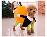 Funny Dog Clothes for Small Dogs, Carrying Pumpkin Halloween Fancy Jumpsuit Puppy Costume, with Cuddly Soft Plush Better to Keep Warm in Winter, for Pet Dogs, Cats. (XL【 40cm (Back Length)】)