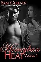 HONEYBUN HEAT COLLECTION - VOLUME 1: BOOKS 1 THROUGH 4