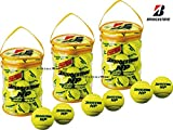 BRIDGESTONE(ブリヂストン) NP(ノンプレッシャー) テニスボール 30個入り×3袋 BBA460T-3SET