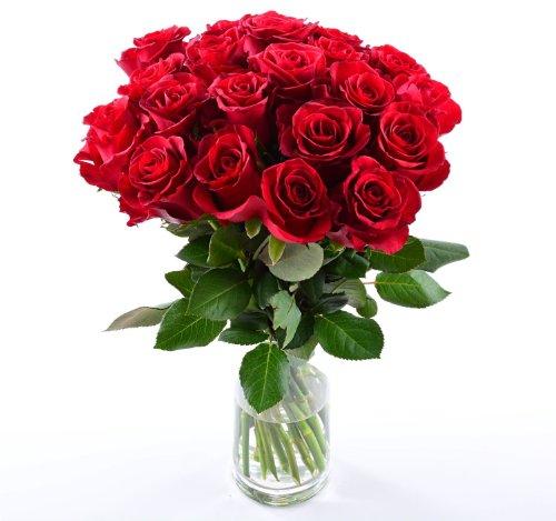 blumenversand-blumenstrauss-rosen-in-rot-20-stuck-rote-rosen-pur-mit-gratis-grusskarte-zum-wunschter