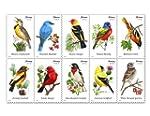 USPS Forever Stamps Songbirds Booklet...