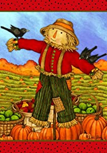 Friendly Scarecrow - 28 Inch X 40 Inch Large Decorative Flag