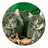 Norwegian Forest Cats 'Soulmates' Fridge Magnet Animal Gift