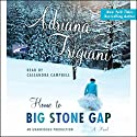 Home to Big Stone Gap Audiobook by Adriana Trigiani Narrated by Cassandra Campbell