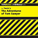 The Adventures of Tom Sawyer: CliffsNotes Audiobook by James L. Roberts Narrated by Nick Podehl