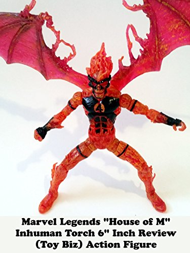 "Marvel Legends ""House of M"" INHUMAN TORCH review 6"" inch (Toy Biz) action figure"
