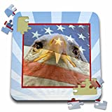 Beverly Turner Patriotic Design and Photography - Eagle Eyes with American Flag in Blue Striped Frame - 10x10 Inch Puzzle (pzl_181562_2)