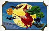 """Vintage Halloween Poster Made From Circa 1910 Postcard Flying Black Cat Witch Series 804 18""""x24"""""""