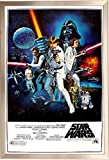 Framed Star Wars: A New Hope Movie (Group, Credits) 24x36 Poster in Brushed Champagne Finish Wood Frame