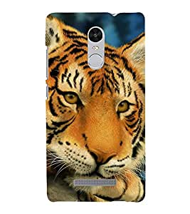 EPICCASE Cutie Baby Tiger Mobile Back Case Cover For Xiaomi Redmi Note 3 (Designer Case)