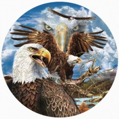 Cheap SunsOut 13 Eagles 1000pc Jigsaw Puzzle by Steven Michael Gardner (B005FYG60Y)