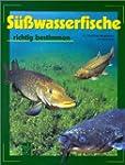 S�sswasserfische richtig bestimmen