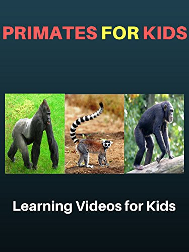 Primates for Kids: Learning Videos for Kids