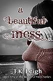 A Beautiful Mess: Volume 1