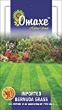 Bermuda Lawn Grass Seeds, suitable for round a year cultivation avg 200 seeds pack by Omaxe